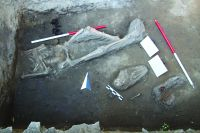 Chronicle of the Archaeological Excavations in Romania, 2017 Campaign. Report no. 84, Galaţi.<br /> Sector Ilustratie.<br /><a href='http://foto.cimec.ro/cronica/2017/02-Cercetari-preventive/084-Galati-jud-Galati-Biserica-Sf-Nicolae-14-prev/Ilustratie/22-a.JPG' target=_blank>Display the same picture in a new window</a>