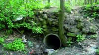 Chronicle of the Archaeological Excavations in Romania, 2017 Campaign. Report no. 104, Turtureşti<br /><a href='http://foto.cimec.ro/cronica/2017/02-Cercetari-preventive/104-Turturesti-comGirov-jud-Neamt-66/fig-1.jpg' target=_blank>Display the same picture in a new window</a>