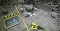 Cronica Cercetărilor Arheologice din România, Campania 2017. Raportul nr. 212, Cosota, Cosota<br /><a href='http://foto.cimec.ro/cronica/2017/rest-sapaturi-nepublicate/212-Ocnita-Buridava-Valcea/fig-7.jpg' target=_blank>Priveşte aceeaşi imagine într-o fereastră nouă</a>