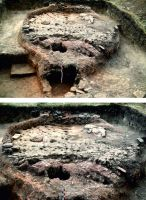 Chronicle of the Archaeological Excavations in Romania, 2017 Campaign. Report no. 218, Vasile Alecsandri, Valea Cavaculei<br /><a href='http://foto.cimec.ro/cronica/2017/rest-sapaturi-nepublicate/218-Stejaru-Tulcea/pl-1.jpg' target=_blank>Display the same picture in a new window</a>