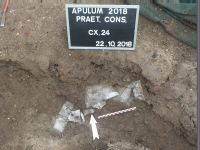 Chronicle of the Archaeological Excavations in Romania, 2018 Campaign. Report no. 2, Alba Iulia, Sediul guvernatorului consular (Mithraeum III).<br /> Sector Apulum_2019\Ilustratie.<br /><a href='http://foto.cimec.ro/cronica/2018/1-sistematice/002-Alba-Iulia-Palatul-Guv-AB-s/Apulum-2019/Ilustratie/pl-viic.jpg' target=_blank>Display the same picture in a new window</a>