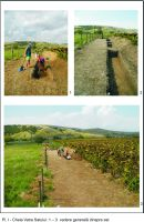 Chronicle of the Archaeological Excavations in Romania, 2018 Campaign. Report no. 18, Cheia, Pazvant I.<br /> Sector Planse-I-XI-CHEIA-2018.<br /><a href='http://foto.cimec.ro/cronica/2018/1-sistematice/018-Cheia-Gradina-CT-s/Planse-I-XI-CHEIA-2018/pl-i.JPG' target=_blank>Display the same picture in a new window</a>