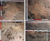 Chronicle of the Archaeological Excavations in Romania, 2018 Campaign. Report no. 19, Costeşti, Cier (Lângă Şcoală)<br /><a href='http://foto.cimec.ro/cronica/2018/1-sistematice/019-Costesti-IS-s/fig-4-l-9-detaliiconstr.jpg' target=_blank>Display the same picture in a new window</a>
