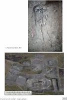 Chronicle of the Archaeological Excavations in Romania, 2018 Campaign. Report no. 29, Isaccea, La Pontonul Vechi (Cetate, Eski-kale).<br /> Sector planse-IMDA.<br /><a href='http://foto.cimec.ro/cronica/2018/1-sistematice/029-Isaccea-Noviodunum-TL-s/pl-9.jpg' target=_blank>Display the same picture in a new window</a>