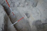 """Cronica Cercetărilor Arheologice din România, Campania 2018. Raportul nr. 86, Tulcea, Parcul """"Monumentul Independenţei""""<br /><a href='http://foto.cimec.ro/cronica/2018/1-sistematice/086-Tulcea-Aegysusu-TL-s/fig-6-aria-c-s-i-aspecte-din-timpul-cercetarilor.jpg' target=_blank>Priveşte aceeaşi imagine într-o fereastră nouă</a>"""