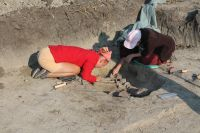 Chronicle of the Archaeological Excavations in Romania, 2018 Campaign. Report no. 89, Urziceni, Vade Ret (Vallaj)<br /><a href='http://foto.cimec.ro/cronica/2018/1-sistematice/089-Urziceni-SM-s/fig-3-img-0721.JPG' target=_blank>Display the same picture in a new window</a>