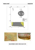 Cronica Cercetărilor Arheologice din România, Campania 2018. Raportul nr. 91, Vânători, La Jolică<br /><a href='http://foto.cimec.ro/cronica/2018/1-sistematice/091-Vanatori-la-jolica-GL-s/anexa-10-s1-1131.jpg' target=_blank>Priveşte aceeaşi imagine într-o fereastră nouă</a>