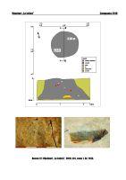 Cronica Cercetărilor Arheologice din România, Campania 2018. Raportul nr. 91, Vânători, La Jolică<br /><a href='http://foto.cimec.ro/cronica/2018/1-sistematice/091-Vanatori-la-jolica-GL-s/anexa-12-s1-1133.jpg' target=_blank>Priveşte aceeaşi imagine într-o fereastră nouă</a>