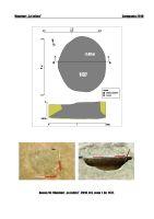 Cronica Cercetărilor Arheologice din România, Campania 2018. Raportul nr. 91, Vânători, La Jolică<br /><a href='http://foto.cimec.ro/cronica/2018/1-sistematice/091-Vanatori-la-jolica-GL-s/anexa-16-s1-1137.jpg' target=_blank>Priveşte aceeaşi imagine într-o fereastră nouă</a>