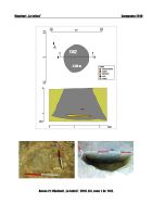 Cronica Cercetărilor Arheologice din România, Campania 2018. Raportul nr. 91, Vânători, La Jolică<br /><a href='http://foto.cimec.ro/cronica/2018/1-sistematice/091-Vanatori-la-jolica-GL-s/anexa-21-s1-1142.jpg' target=_blank>Priveşte aceeaşi imagine într-o fereastră nouă</a>