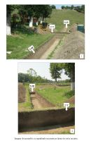 Chronicle of the Archaeological Excavations in Romania, 2018 Campaign. Report no. 105, Coşoteni<br /><a href='http://foto.cimec.ro/cronica/2018/2-preventive/105-Cososteni-TR-p/plansa-05.JPG' target=_blank>Display the same picture in a new window</a>