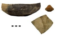 Chronicle of the Archaeological Excavations in Romania, 2018 Campaign. Report no. 129, Broscăuţi, Hârtop<br /><a href='http://foto.cimec.ro/cronica/2018/3-diagnostic/129-Broscauti-Hartop-BT-d/fig-3.jpg' target=_blank>Display the same picture in a new window</a>