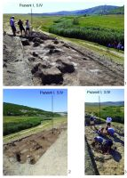 Chronicle of the Archaeological Excavations in Romania, 2019 Campaign. Report no. 19, Cheia, Pazvant I.<br /> Sector Planse-I-XI-CHEIA-2018.<br /><a href='http://foto.cimec.ro/cronica/2019/01-sistematice/019-cheia-gradina-ct-pazvant-s/pl-1.jpg' target=_blank>Display the same picture in a new window</a>