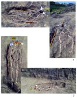 Chronicle of the Archaeological Excavations in Romania, 2019 Campaign. Report no. 19, Cheia, Pazvant I.<br /> Sector Planse-I-XI-CHEIA-2018.<br /><a href='http://foto.cimec.ro/cronica/2019/01-sistematice/019-cheia-gradina-ct-pazvant-s/pl-3.jpg' target=_blank>Display the same picture in a new window</a>