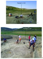 Chronicle of the Archaeological Excavations in Romania, 2019 Campaign. Report no. 19, Cheia, Pazvant I.<br /> Sector Planse-I-XI-CHEIA-2018.<br /><a href='http://foto.cimec.ro/cronica/2019/01-sistematice/019-cheia-gradina-ct-pazvant-s/pl-4.jpg' target=_blank>Display the same picture in a new window</a>