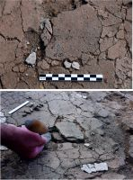 Chronicle of the Archaeological Excavations in Romania, 2019 Campaign. Report no. 44, Maliuc, Taraschina.<br /> Sector Ilustratii.<br /><a href='http://foto.cimec.ro/cronica/2019/01-sistematice/044-maliuc-tl-taraschina-s/pl-002.jpg' target=_blank>Display the same picture in a new window</a>