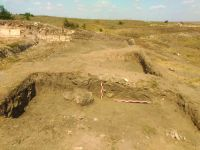 Chronicle of the Archaeological Excavations in Romania, 2019 Campaign. Report no. 55, Pantelimon, Cetate<br /><a href='http://foto.cimec.ro/cronica/2019/01-sistematice/055-pantelimonul-de-sus-ct-ulmetum-s/3-sector-sv-sectiunea-s-viii-profil-intermediar.jpg' target=_blank>Display the same picture in a new window</a>
