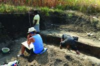 Chronicle of the Archaeological Excavations in Romania, 2019 Campaign. Report no. 69, Scânteia, La Nuci (Dealul Bodeştilor)<br /><a href='http://foto.cimec.ro/cronica/2019/01-sistematice/069-scanteia-is-lanucidealbodesti-s/Fig15.JPG' target=_blank>Display the same picture in a new window</a>
