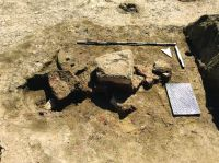 Chronicle of the Archaeological Excavations in Romania, 2019 Campaign. Report no. 69, Scânteia, La Nuci (Dealul Bodeştilor)<br /><a href='http://foto.cimec.ro/cronica/2019/01-sistematice/069-scanteia-is-lanucidealbodesti-s/Fig4a.jpg' target=_blank>Display the same picture in a new window</a>