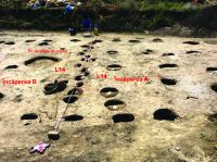 Chronicle of the Archaeological Excavations in Romania, 2019 Campaign. Report no. 69, Scânteia, La Nuci (Dealul Bodeştilor)<br /><a href='http://foto.cimec.ro/cronica/2019/01-sistematice/069-scanteia-is-lanucidealbodesti-s/Fig5.jpg' target=_blank>Display the same picture in a new window</a>