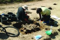 Chronicle of the Archaeological Excavations in Romania, 2019 Campaign. Report no. 69, Scânteia, La Nuci (Dealul Bodeştilor)<br /><a href='http://foto.cimec.ro/cronica/2019/01-sistematice/069-scanteia-is-lanucidealbodesti-s/fig12b-gr-in-timpul-golirii.JPG' target=_blank>Display the same picture in a new window</a>