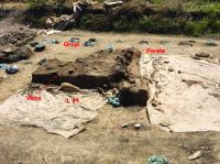 Chronicle of the Archaeological Excavations in Romania, 2019 Campaign. Report no. 69, Scânteia, La Nuci (Dealul Bodeştilor)<br /><a href='http://foto.cimec.ro/cronica/2019/01-sistematice/069-scanteia-is-lanucidealbodesti-s/fig2-vatra-l14.jpg' target=_blank>Display the same picture in a new window</a>