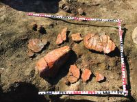 Chronicle of the Archaeological Excavations in Romania, 2019 Campaign. Report no. 69, Scânteia, La Nuci (Dealul Bodeştilor)<br /><a href='http://foto.cimec.ro/cronica/2019/01-sistematice/069-scanteia-is-lanucidealbodesti-s/fig9-vas-altar-gr-293.jpg' target=_blank>Display the same picture in a new window</a>
