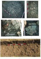Chronicle of the Archaeological Excavations in Romania, 2019 Campaign. Report no. 74, Şoimeşti, Dealul Merezu (La Merez)<br /><a href='http://foto.cimec.ro/cronica/2019/01-sistematice/074-soimesti-ceptura-ph-dealul-merez-s/plansa-2.jpg' target=_blank>Display the same picture in a new window</a>