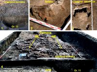 Chronicle of the Archaeological Excavations in Romania, 2019 Campaign. Report no. 76, Tăcuta, Dealul Miclea (Paic)<br /><a href='http://foto.cimec.ro/cronica/2019/01-sistematice/076-tacuta-vs-dealul-miclea-paic-vaslui-s/fig-3-tacuta-l-5-019.jpg' target=_blank>Display the same picture in a new window</a>